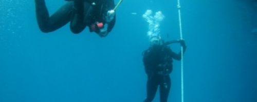 RUB school sports - diving in a beautiful nature reserve in Europe
