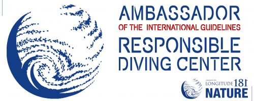 What is an eco responsible diving?